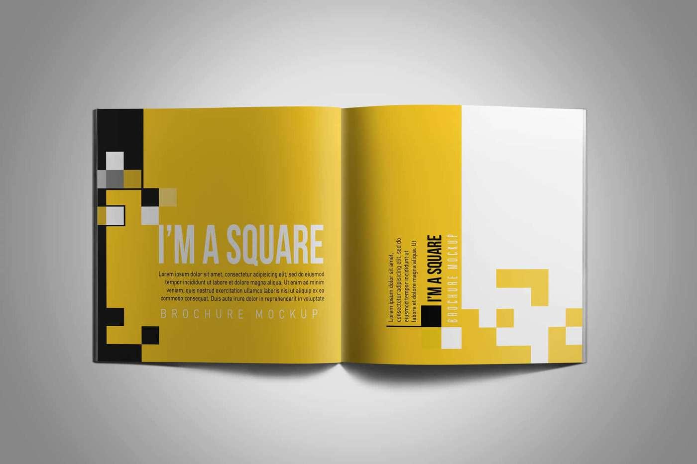 Square-Brochure-Mockup-05
