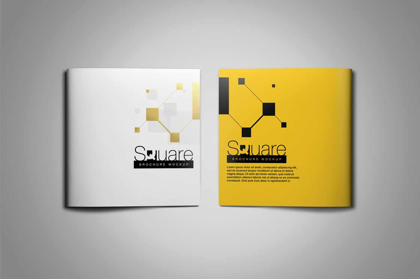 Square-Brochure-Mockup-06