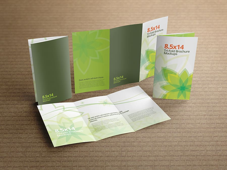 Trifold Brochure Mockups 8 5x14 size on Vectogravic Design