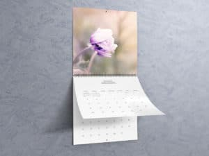12'x12'-Wall-Calendar-Mockups-02