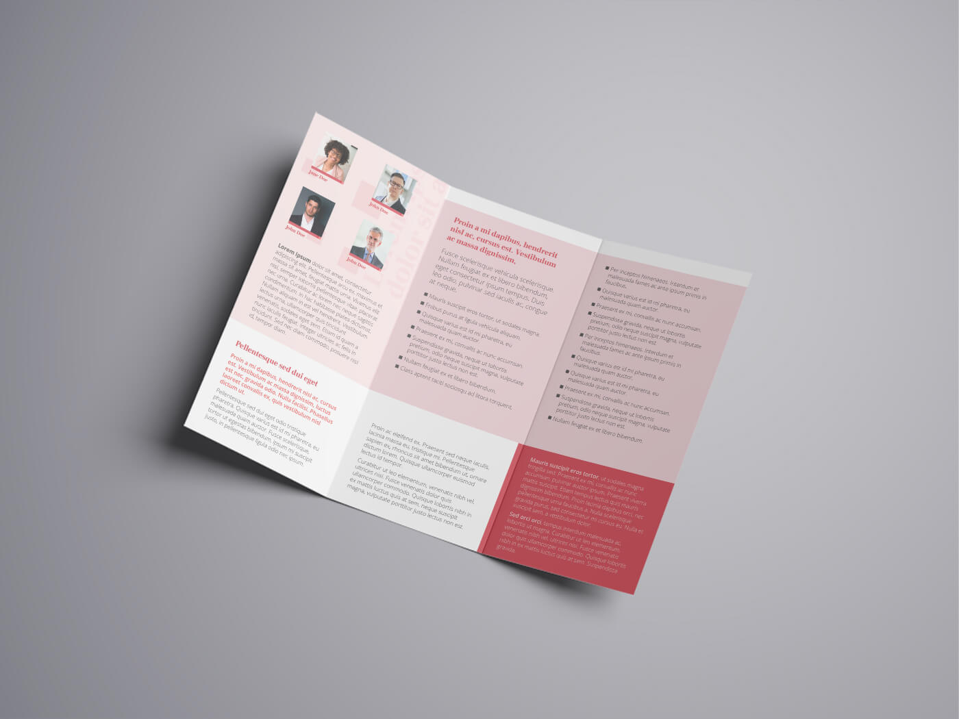 Attorney Law Tri fold Brochure Template 03